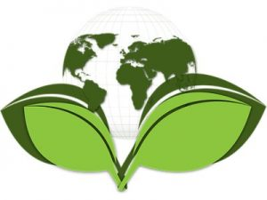 Green is Good – Why being environmentally friendly is wallet friendly