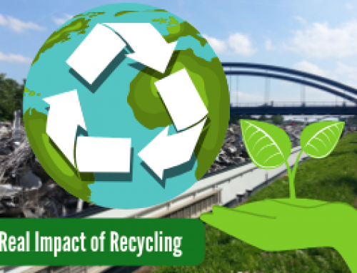 The Real Impact of Recycling