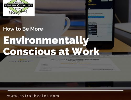 How to Be More Environmentally Conscious at Work