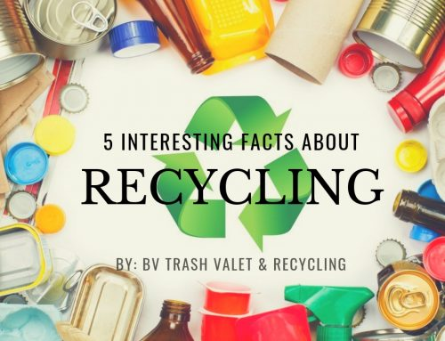 5 Interesting Facts About Recycling