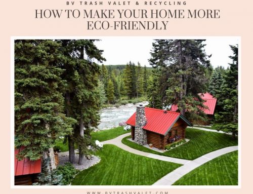 How to Make Your Home More Eco-Friendly, Room By Room