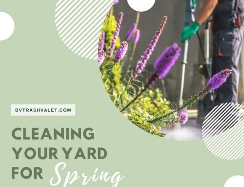 Cleaning Your Yard for Spring