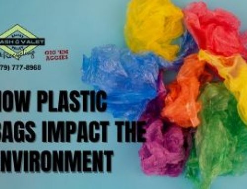 How Plastic Bags Impact the Environment