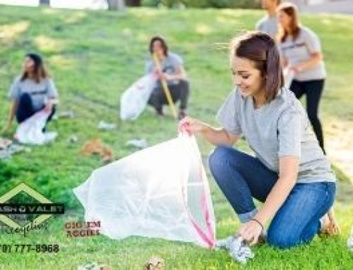 Support Your Community Environment With Park Cleanups