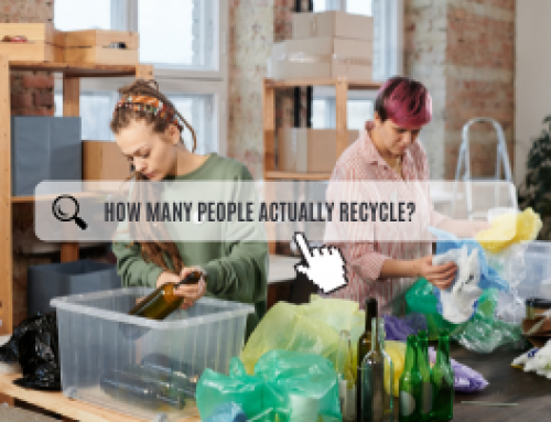How Many People Actually Recycle?